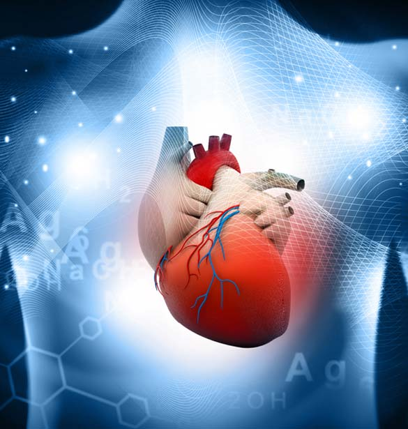 Prevention of Heart Disease and Stroke